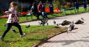 Bambina che corre in un parco